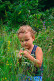 The young boy in a green. Meadow Stock Images