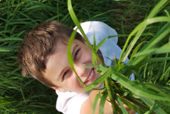 Young boy in the green grass Royalty Free Stock Photos