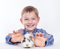 Young boy with guinea pig Royalty Free Stock Photography
