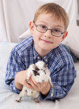Young boy with guinea pig Stock Photo