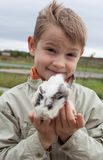 Young boy with guinea pig Royalty Free Stock Images