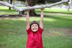 Young boy hangs from a tree Stock Photo