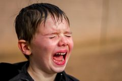 Young Boy Having a Temper Tantrum. A little boy screaming at the top of his lungs in the middle of a temper tantrum. A large tear rolls don his cheek and his royalty free stock photo