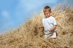 Young boy in haystack Royalty Free Stock Images