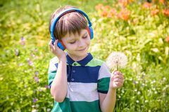 Young boy in headphones listening to modern music in nature. Child likes the song and look to giant dandelion. Kid music relax