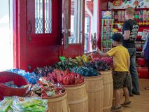 A young boy and his father dig through various bins at a candy store stock image