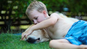 Young boy and his golden retriever in the grass stock video
