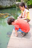Young boy and his sister admiring a young turtle Royalty Free Stock Photography