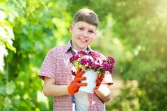 Boy holding bucket with flowers royalty free stock photos