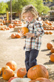 Young Boy Holding His Pumpkin at a Pumpkin Patch. Adorable Little Boy Sitting and Holding His Pumpkin in a Rustic Ranch Setting at the Pumpkin Patch stock images