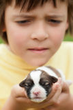 Young boy holding newborn puppy dog with great care Stock Photo