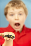 Young Boy Holding Plastic Spider Stock Image