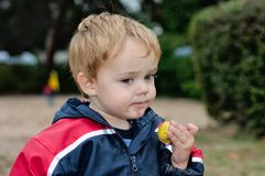 Young boy holding snack Royalty Free Stock Images