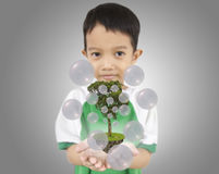 Young boy holding  a tree for the earth. Royalty Free Stock Image