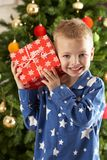 Young Boy Holding Wrapped Present In Front Of Tree Stock Image