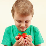 Young boy holds handful of fresh strawberries Stock Image