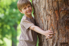 Young boy hugging a tree at park Stock Images