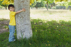 Young boy hugging a tree at park Stock Photography