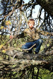 Young Boy Hunter Hiding. A camouflaged preteen boy hiding in a tree while hunting. Shallow depth of field Royalty Free Stock Image