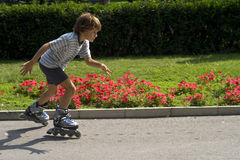 Young boy inline skating. Royalty Free Stock Photography