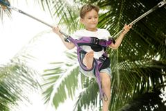 Young boy jumping bungee Stock Image