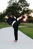 Young Boy Karate In Park Royalty Free Stock Images