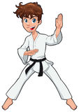 Young boy, Karate Player Stock Images