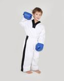 Young boy kickboxing fighter isolated on white Royalty Free Stock Images