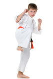 Young boy in kimono in fighting stance. A portrait of a confident boy in kimono in fighting stance stock images