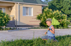 Young Boy Kneeling on Lawn with Bug Net Royalty Free Stock Images