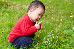 Young boy learn nature Stock Photo