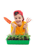 Young boy learning to grow food Royalty Free Stock Photography