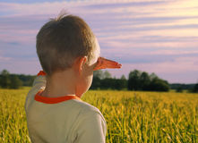 Young boy looking horizon Stock Images
