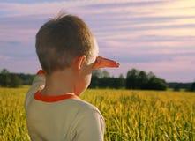 Young boy looking horizon. Happy young boy looking horizon in sundown Stock Images