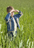 Young boy looking horizon Stock Photos
