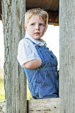 Young boy looking out of old barn Stock Photos