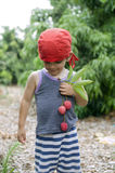 Young boy and lychee Royalty Free Stock Image
