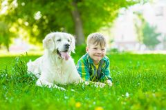 Young boy lying with golden retriever dog on green grass.  stock images