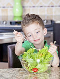 Young boy making salad Royalty Free Stock Photography