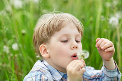 Young boy in meadow blowing on dandelion seeds Royalty Free Stock Photo