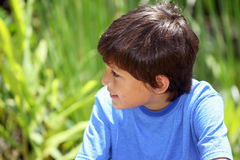 Young boy in nature series Stock Photography