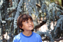 Young boy in nature series Royalty Free Stock Images