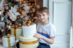 Young boy opens a gift under a Christmas tree Royalty Free Stock Photos