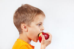 Young boy in a orange shirt eating juicy red apple Royalty Free Stock Images