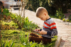 Young boy outdoors on the grass at backyard using his tablet com Royalty Free Stock Photo