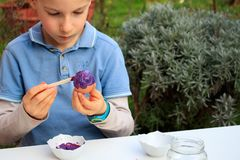 A young boy painting Easter eggs outdoor in France. Easter children creative activity.  royalty free stock photos