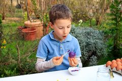 A young boy painting Easter eggs outdoor in France. Easter children creative activity.  stock photography