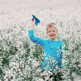 Young Boy with paper Plane  and white Field Flowers Royalty Free Stock Images