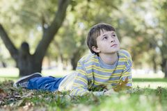 Young Boy in Park Stock Images