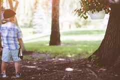 Young Boy In A Park  Royalty Free Stock Photography